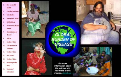 Global burden of disease module